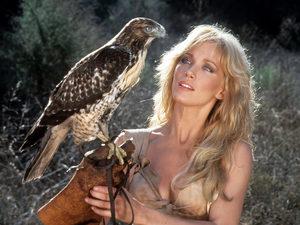 «Шина — королева джунглей» вернётся в Голливуд